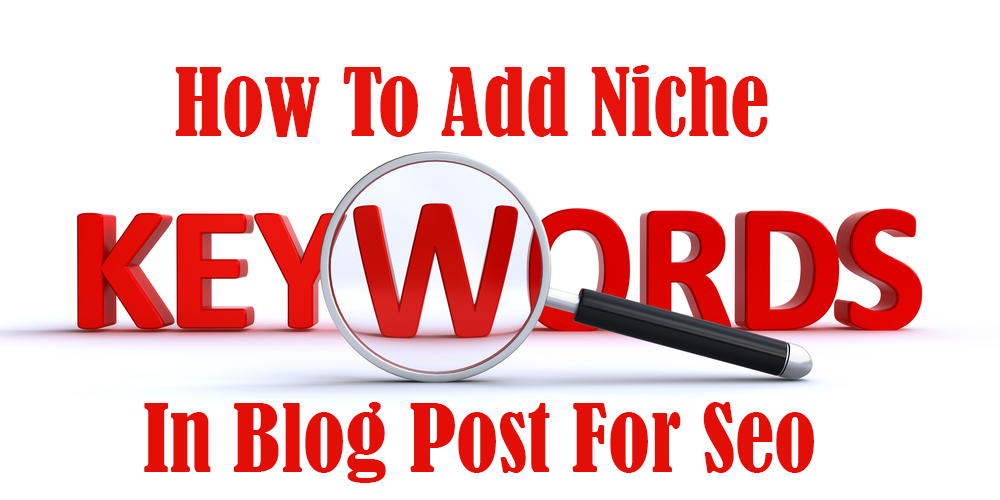 How To Add Niche Keywords In Blog Post For Seo
